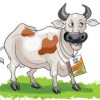 Centre Demands Aadhaar-like Cards for Cattle