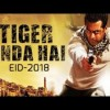 Poster of Salman's Next 'Tiger Zinda Hai' Revealed By Yash Raj Films